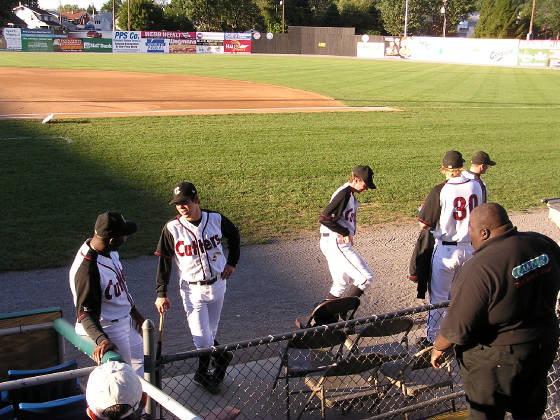 Bowman Field - The Williamsport Crosscutters